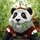 Royal panda icon 3